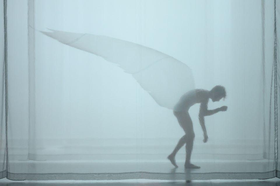 Metamorphosis – Compagnia Virgilio Sieni