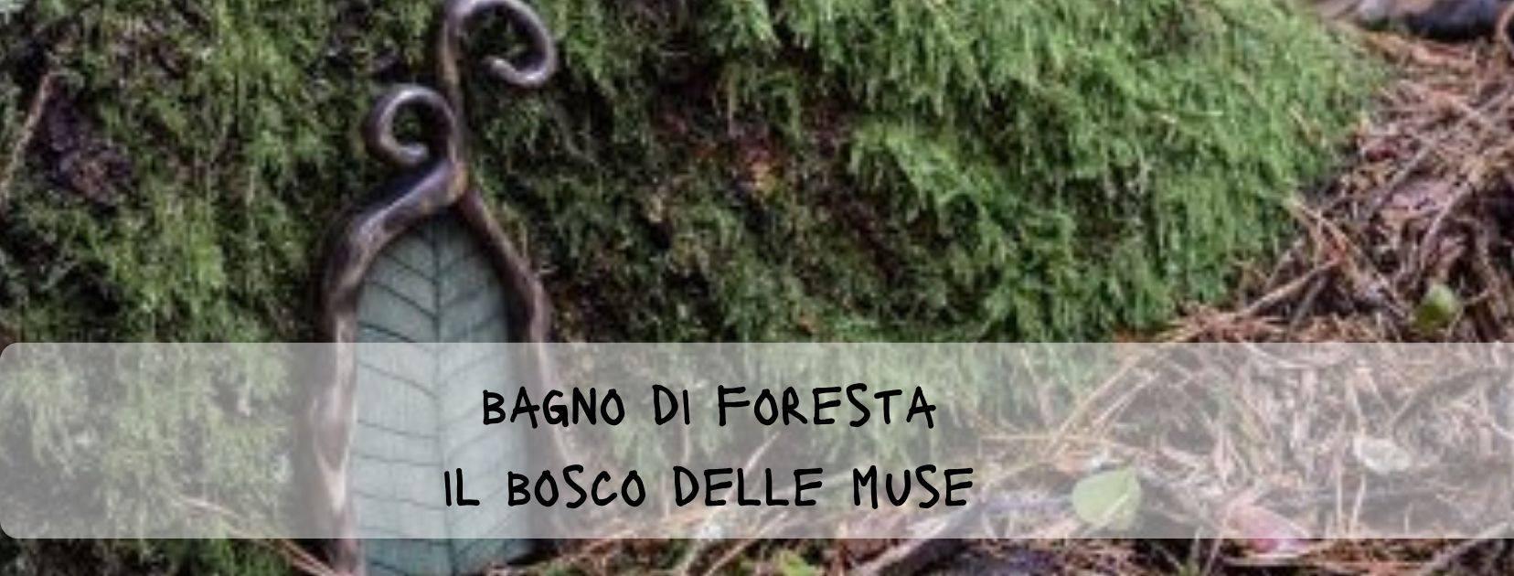 Bagno di foresta: Il bosco delle Muse