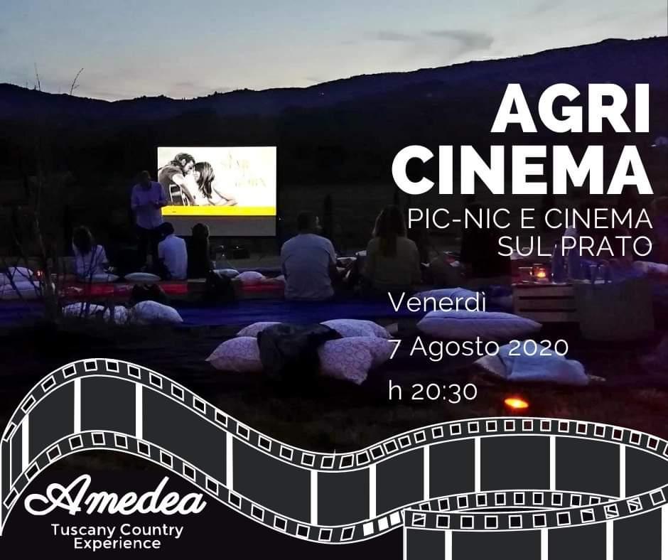 Agricinema: Pic-nic e Cinema sul prato